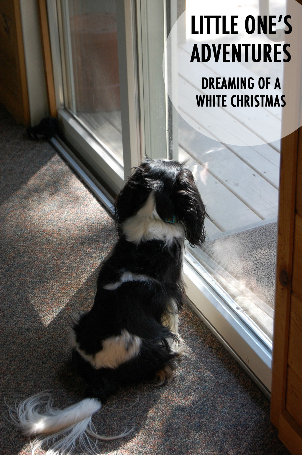 Little One's dreaming of a white Christmas. // dreams-etc.com