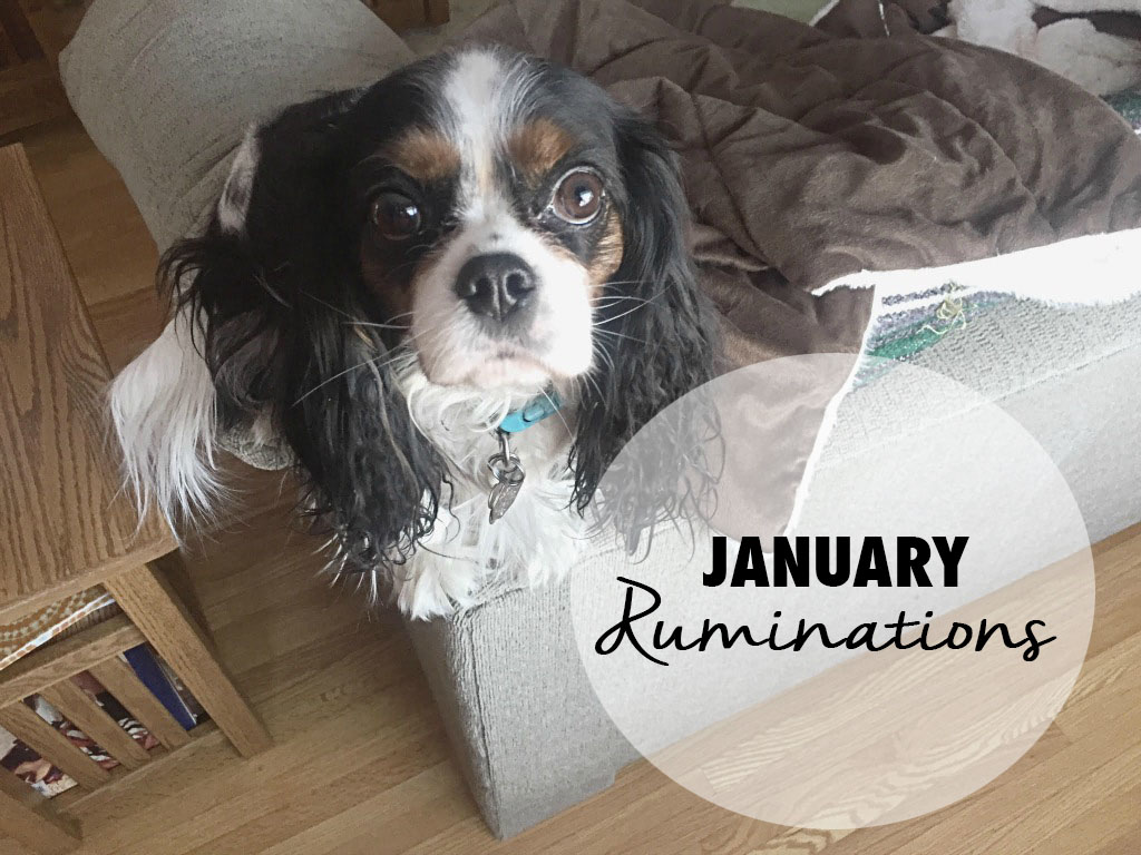 Reflections on the month of January. // dreams-etc.com