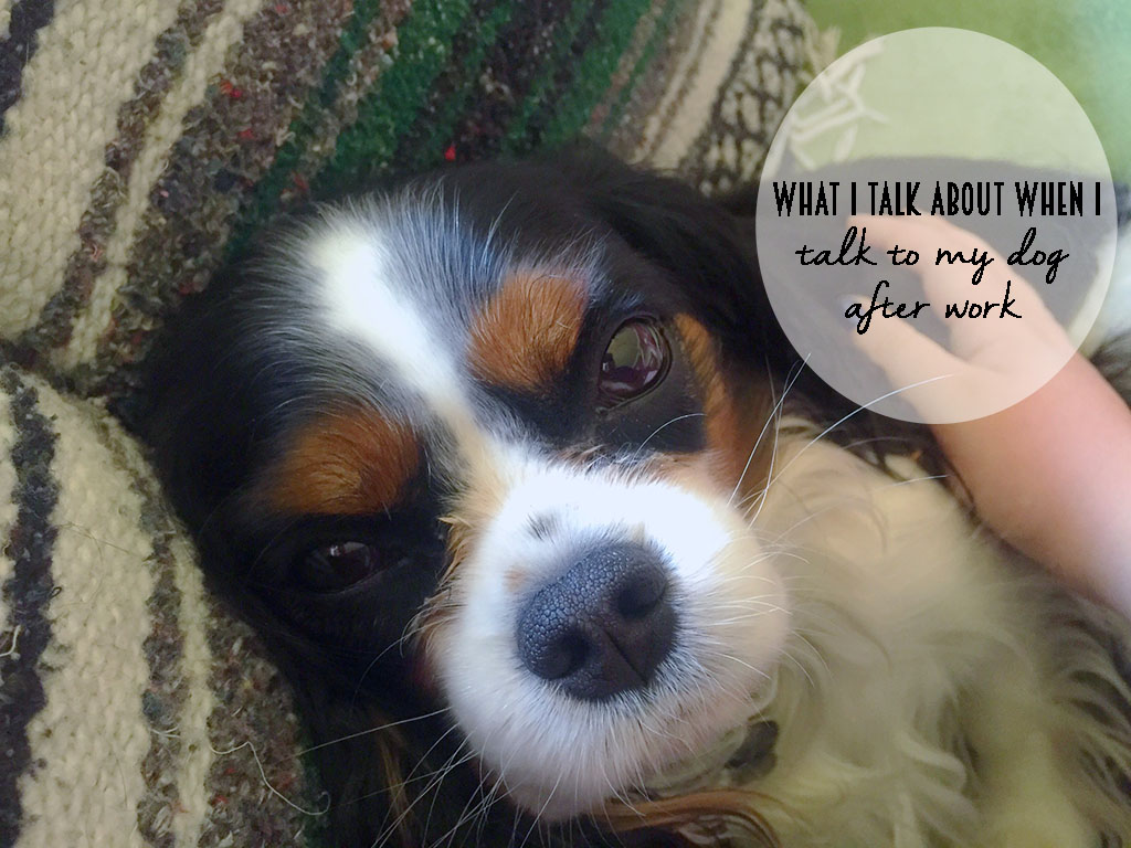 Yep! My dog and I totally have conversations when I get home from work. Here's a little recap of our chats! // dreams-etc.com