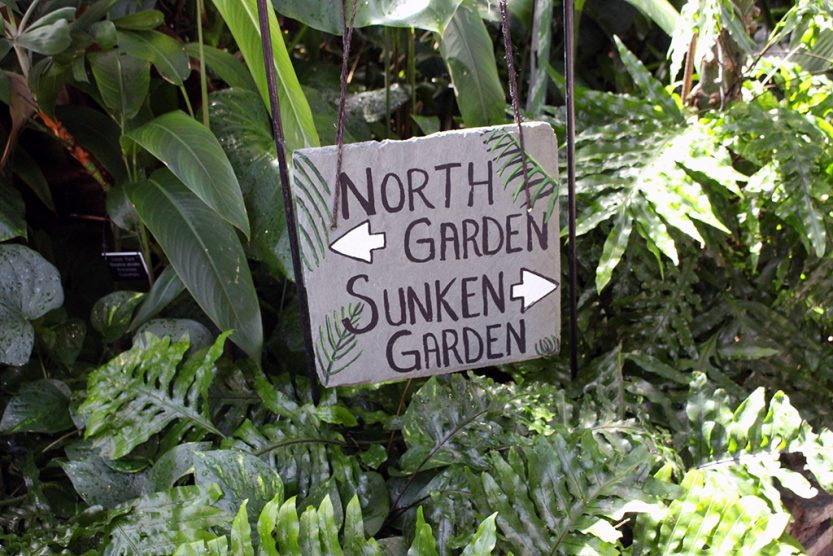Take a virtual tour of the North Garden at the Como Zoo & Conservatory in St. Paul, MN! // dreams-etc.com