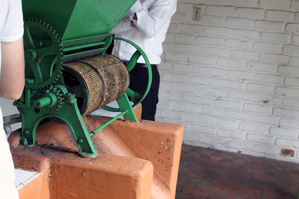 While in Bogota, take a day trip to Hacienda Coloma to see how coffee is produced! // dreams-etc.com