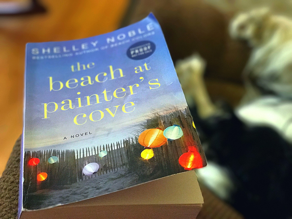 Strong, quirky female characters, a crumbling house with a fascinating history, art and the beach make The Beach at Painter's Cove by Shelley Noble the perfect summer read if you're looking for a book that isn't all fluff, but isn't too intense. // dreams-etc.com