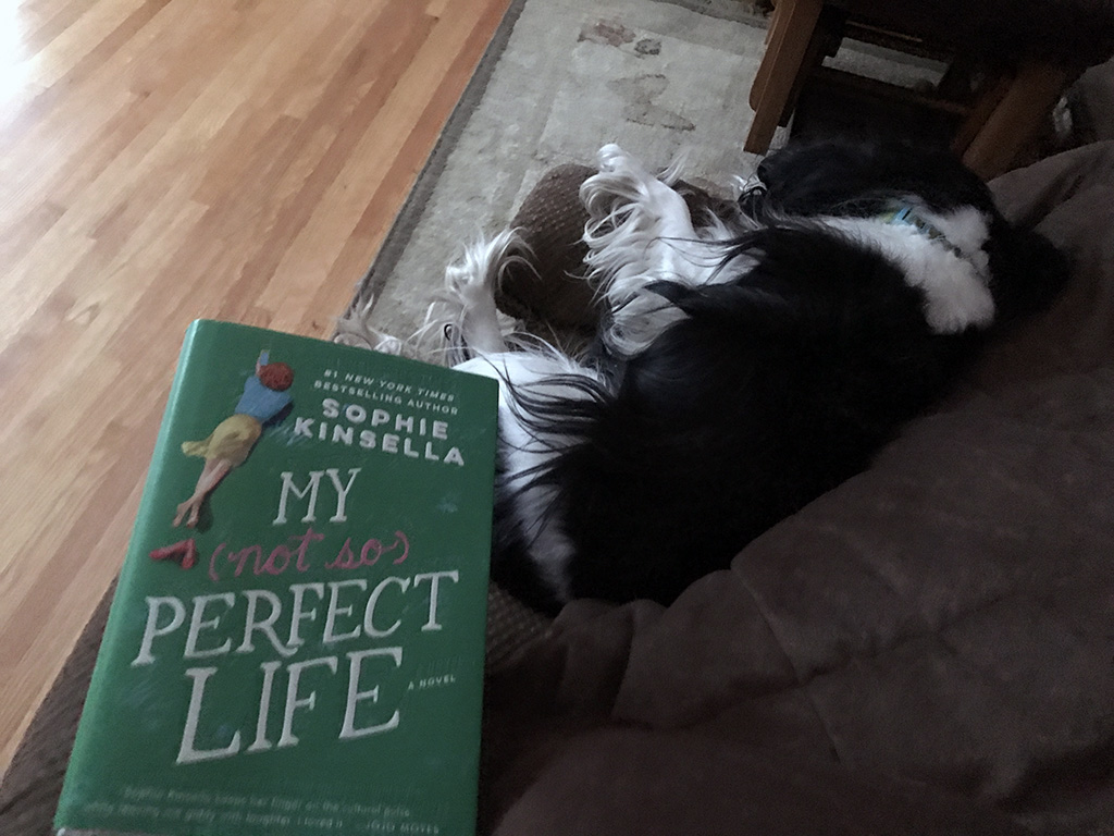A roundup of book reviews for books that I read from February through July and a guide to help you decide if you should read them. // dreams-etc.com