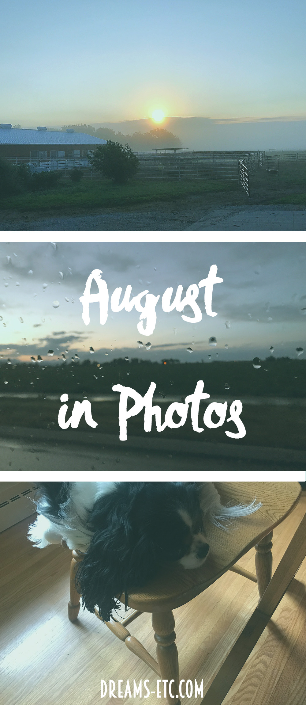 August in photos: a getaway to Colorado and a slow end to the month. Also: a recap of posts from the month. // dreams-etc.com