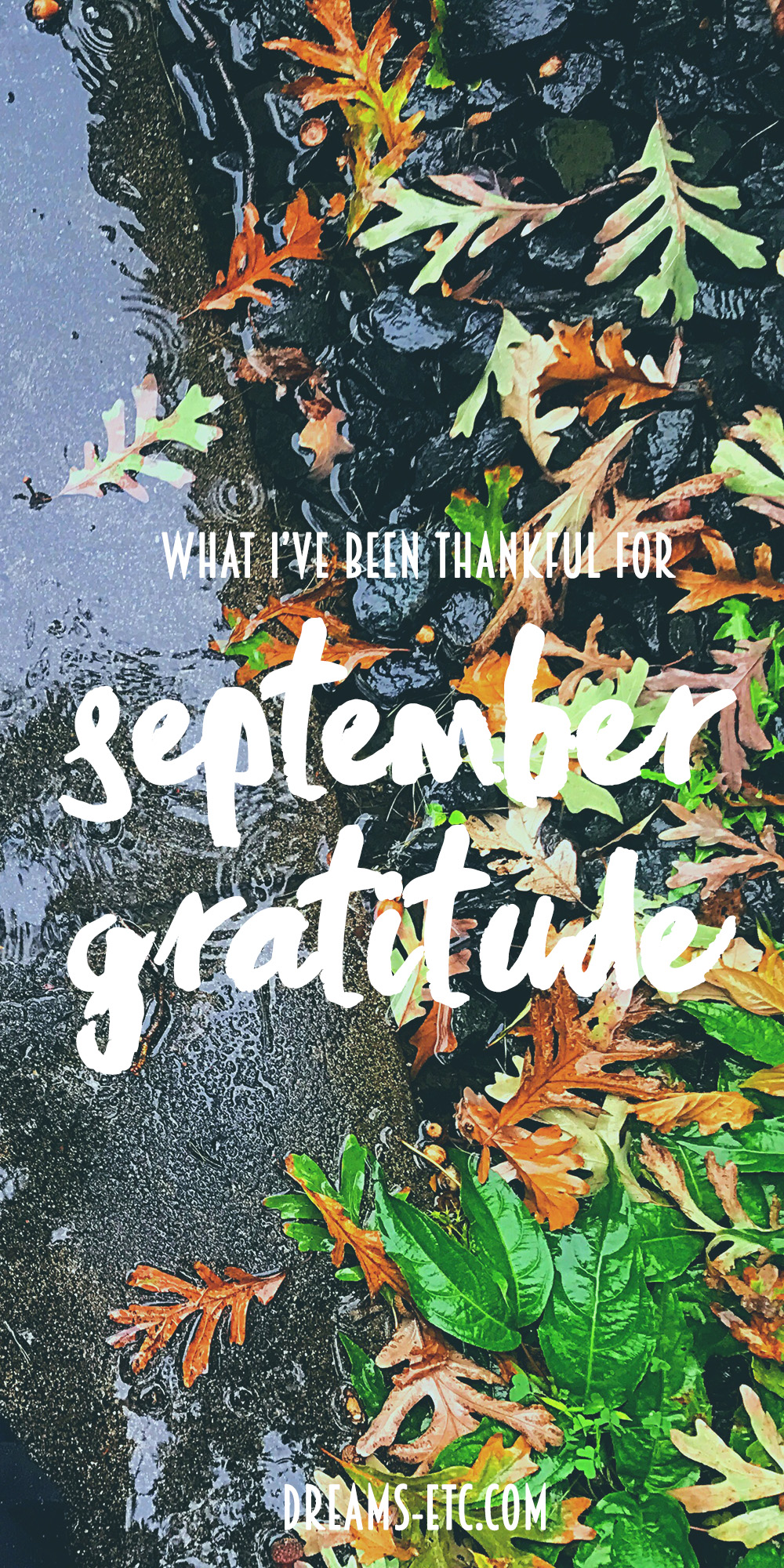 Let's talk what we've been grateful for in September! The last few months have been frustrating, but there's always happiness to be found.