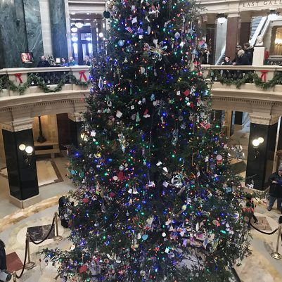 Reliving childhood memories and visiting Madison, Wisconsin in December to see the state Christmas tree in the rotunda! // dreams-etc.com