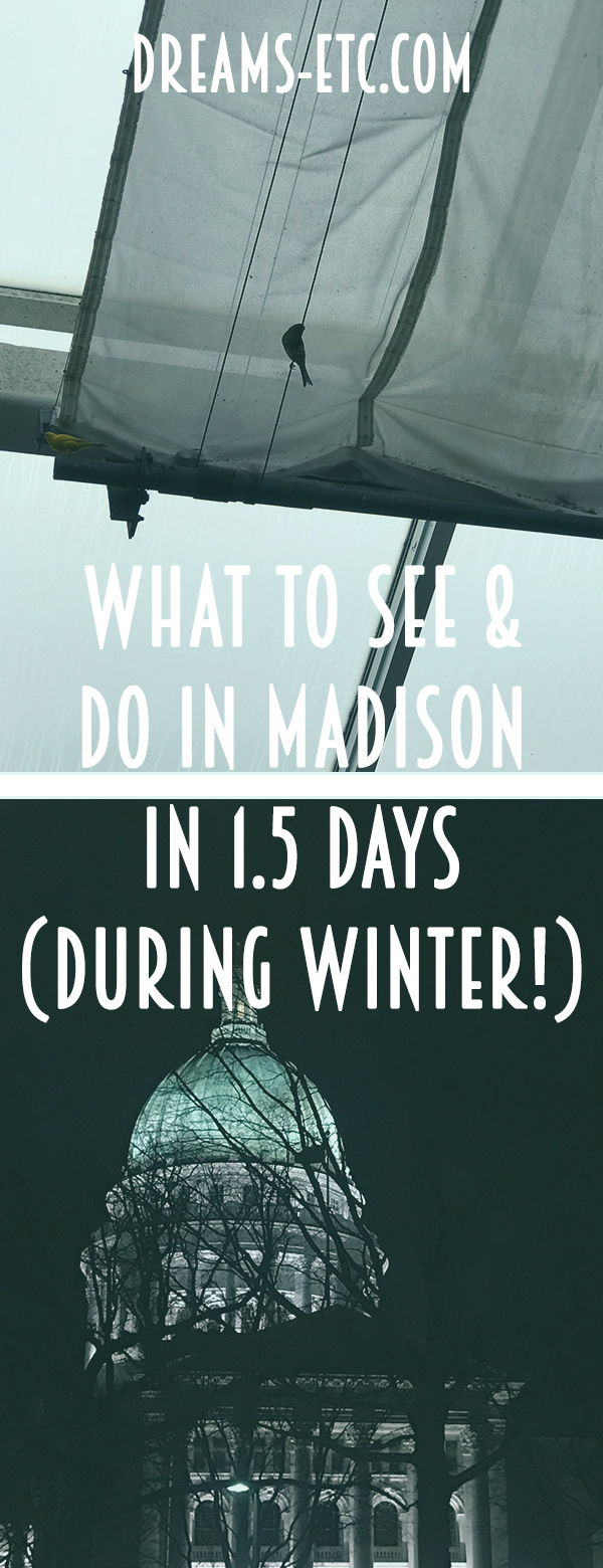 You have 1.5 days to tour the vibrant little city of Madison, Wisconsin? Perfect! Here's what to see and do... in winter! // dreams-etc.com