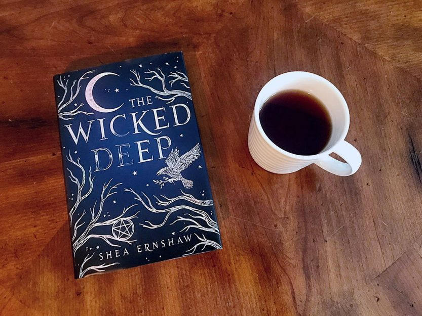 Reviews of books read in December 2018 and a guide to help you decide whether or not its the right book to add to your to be read list! // dreams-etc.com